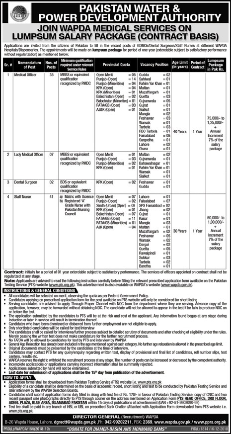 WAPDA Medical Jobs 2019