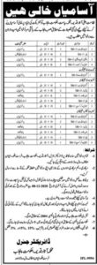 Archaeology and Tourism Department Jobs 2020