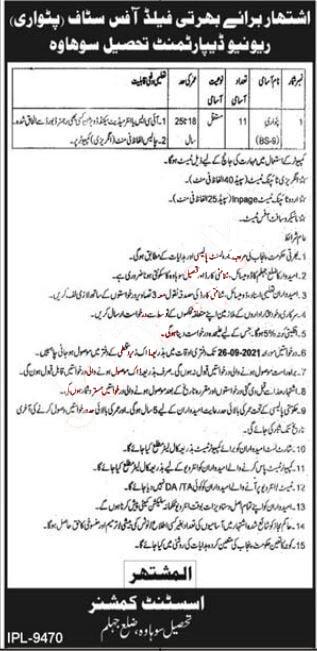 Patwari Job